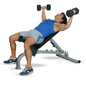 Inflight Fitness 5005 FID Bench - Premier Fitness Service